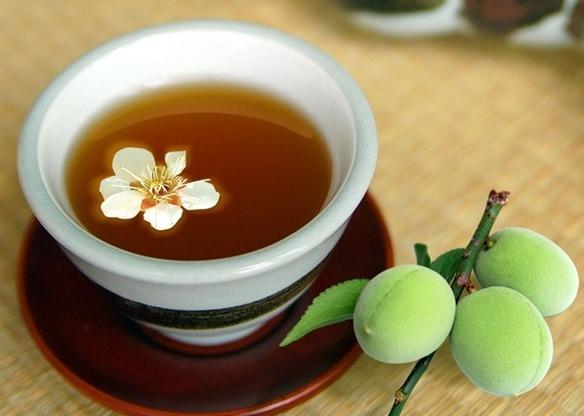 ダイエットプーアール茶の口コミと効果は本当?食前に飲むだけで-12キロ痩せるという効果の真相とは
